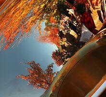 Sousaphone Reflections 1 by Charles Kosina