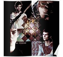 the maze runner thomas and newt Poster