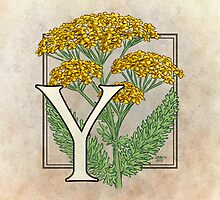 Y is for Yarrow by Stephanie Smith