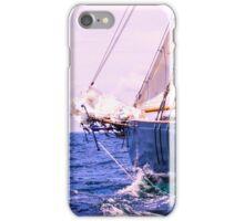 Alongside The Adventurer iPhone Case/Skin