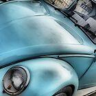 Bug by Mike Higgins