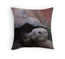 I Might Be Slow...But Don't Mess With Me Throw Pillow