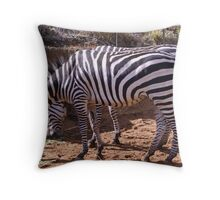 Zebra, Most Striped One of All Throw Pillow