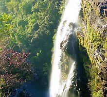 Waterfalls, South Africa by Alberto  DeJesus