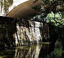A River Runs Through It by Viki B