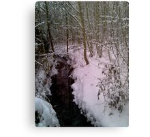 Snow and Water Metal Print
