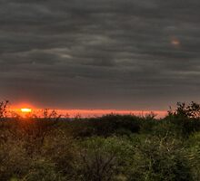 A Bushveld Sunset - HDR by Margo Naude