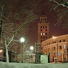 Night city by VallaV