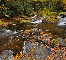 Dingmans Creek Falls In Autumn by Stephen Vecchiotti