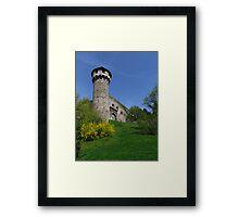 Castle Tower, Budapest, Hungary Framed Print