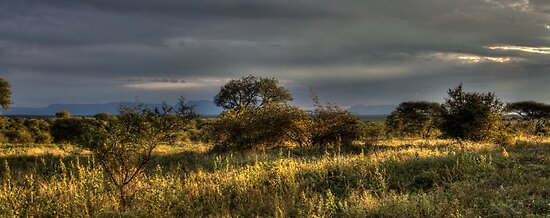 Drakensburg in the Distance - HDR by Margo Naude