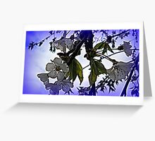 Spring Blooms with Special Effects Greeting Card