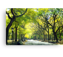 Avenue of Trees - Central Park Canvas Print