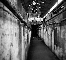 Sous le géant by Peter Denniston