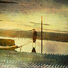 Alone on the Shore by Pat Moore