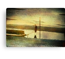 Alone on the Shore Canvas Print
