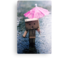 A Rainy Danbo Canvas Print