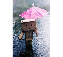 A Rainy Danbo Photographic Print