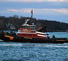 Tractor Tug headed back into Portland Harbor by Jenny Webber