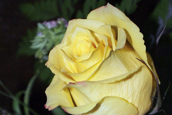 The Friendship Flower by AuntDot