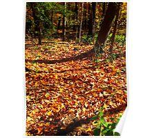 Fallen Summer Rising Fall Poster