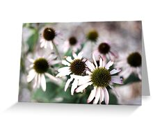 A Pocket Full of Posies Greeting Card