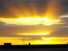 Early Sun by Kayleigh Walmsley