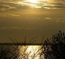 Chesapeake Bay, Another View by Claudia Smaletz