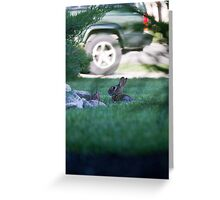 Rabbit in Suburbia Greeting Card