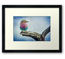 { color in the sky } Framed Print