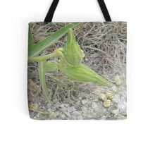 Antelope Horns Seed Pods Tote Bag