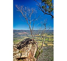 Autumn Afternoon at Cathedral Ranges Photographic Print
