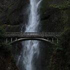 Bridge at Multnomah Falls by Michael Lucas