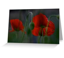 My love poppies  .  Kocham maki .  L O V E  POPPIES  .  Andrew Brown Sugar.  Views: 324 . thank you a bunch ! Ok! ok! Greeting Card