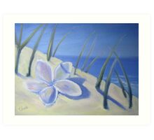 Between the dune grasses Art Print