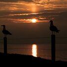 Peel Sunset by Jonny Andrews