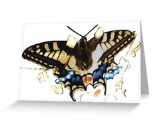 Persistence of the Butterfly Greeting Card