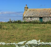 Country cottage, Sanday, Orkney by Catriona  Crawford