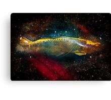 folding space Canvas Print