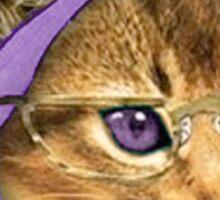 Hipster kitty Sticker
