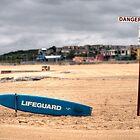 DANGER - Lifeguard by Jason Ruth