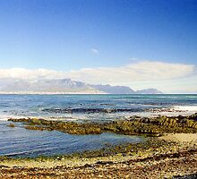 Capetown View from Robben island, South Africa by Alberto  DeJesus