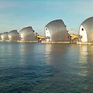 The Thames Barrier by Steven Mace