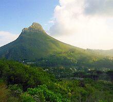 Capetown Landscape, South Africa by Alberto  DeJesus