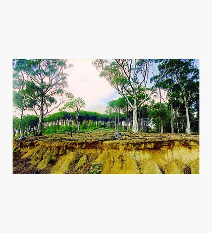 Capetown Terrain, South Africa Photographic Print