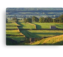 Morning Light near Askrigg - Yorkshire Dales Canvas Print