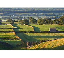 Morning Light near Askrigg - Yorkshire Dales Photographic Print