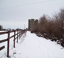 Dunsoghly Castle, January 2011 by eddietheclutch