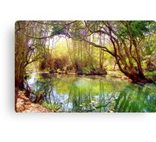 Gentle Stream, South Africa Canvas Print