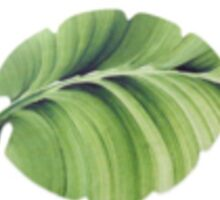 Eunoia Leaf Sticker